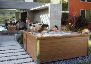 vente spa jacuzzi 4 5 places haute savoie annecy savoie. Black Bedroom Furniture Sets. Home Design Ideas